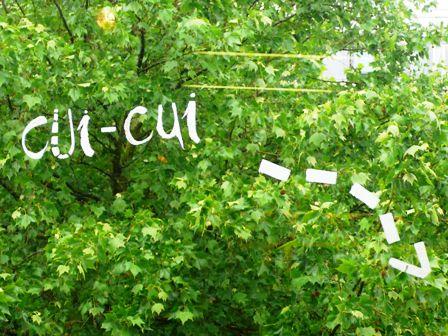 Médiathèque de Roubaix, mai 2007.